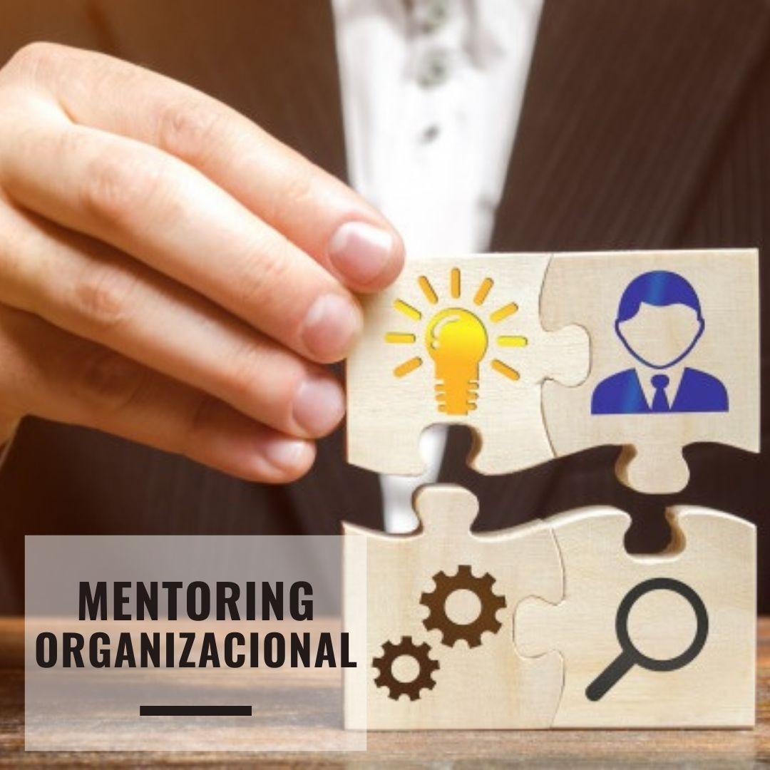 mentoring organizacional